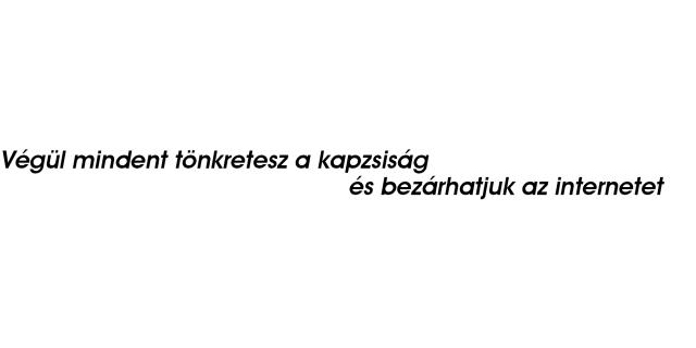 internetes botok bevétele)