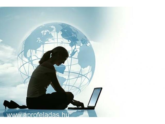 internetes bevételek napi fizetéssel