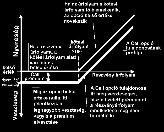 valós opciók opcióelmélete)