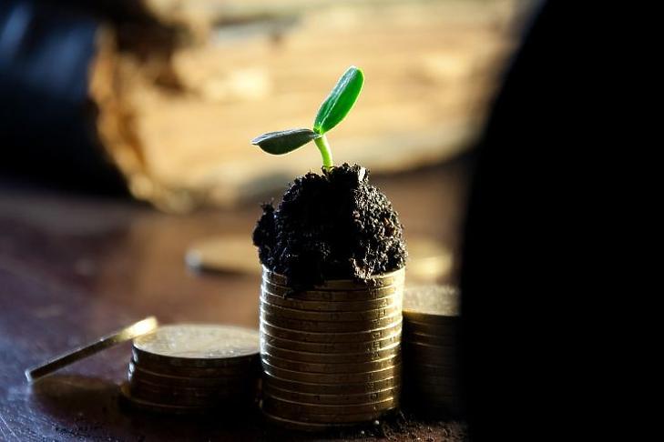 vélemények a részvényopciókról